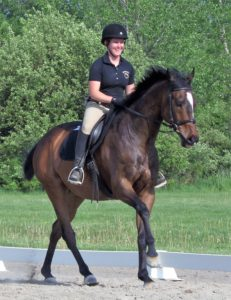 riding lessons program