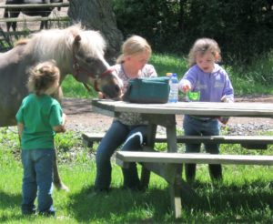 lunch at horse camp