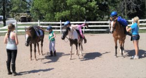 riding lesson party
